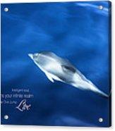Swim Play Dive Jump Live Acrylic Print