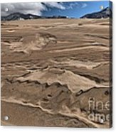 Swimming In The Dunes Acrylic Print