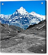 Swiss Alps - Schreckhorn And Valley In Black And White Acrylic Print