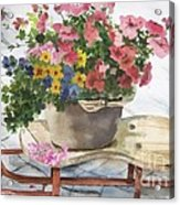 Swiss Sled With Flowers Acrylic Print