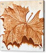 Sycamore #1 Oklahoma Red Dirt Artwork Tm Acrylic Print