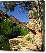 Sycamore Canyon Acrylic Print