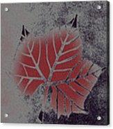 Sycamore Leaf Acrylic Print
