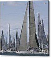Sydney To Hobart Yacht Race Acrylic Print