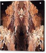 Symmetries - Marucii Acrylic Print