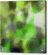 T.1.63.4.7x5.5120x3657 Acrylic Print