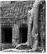Ta Prohm Roots And Stone 02 Acrylic Print