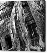 Ta Prohm Roots And Stone 03 Acrylic Print