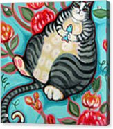 Tabby Cat On A Cushion Acrylic Print