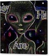 T.a.h. Acrylic Print