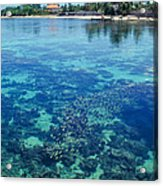 Tahiti Papeete Acrylic Print