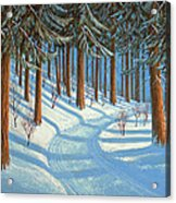 Tahoe Forest In Winter Acrylic Print