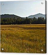 Tahoe Keys Meadow Acrylic Print