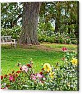 Take A Seat - Beautiful Rose Garden Of The Huntington Library. Acrylic Print