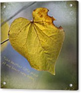 Take Another Little Piece Of My Heart Acrylic Print