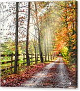 Take The Back Roads Acrylic Print