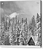 Taking Refuge - Grand Teton Acrylic Print by Sandra Bronstein