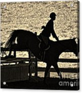 Taking The Fence Acrylic Print