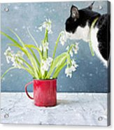 Taking Time To Smell The Flowers Acrylic Print