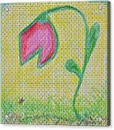 Talking In The Garden Acrylic Print