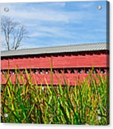 Tall Grass And Sachs Covered Bridge Acrylic Print