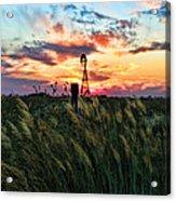 Tall Grass Windmill Acrylic Print