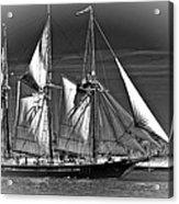 Tall Ship Bw Acrylic Print