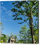 Tall Tree And Temple Acrylic Print