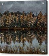 Tamarack Reflections Acrylic Print