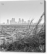 Tampa Across The Bay Acrylic Print by Marvin Spates