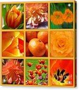 Tangerine Dream Window Acrylic Print by Joan-Violet Stretch