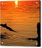 Tangerine Moonlight Acrylic Print by Karen Wiles