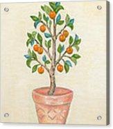 Tangerine Tree Acrylic Print