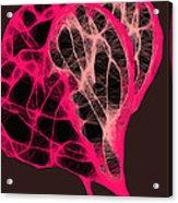 Tangled Hearts Acrylic Print