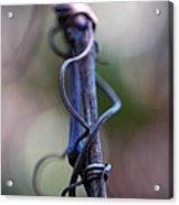 Tangled In Blue Acrylic Print
