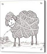 Tangled Sheep Acrylic Print
