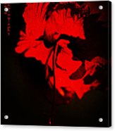Tango Of Passion For You Acrylic Print