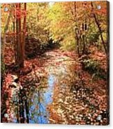 Tanners Brook Acrylic Print