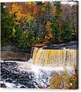 Taquamenon Falls IIi Acrylic Print