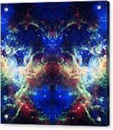 Tarantula Reflection 1 Acrylic Print