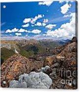 Tasman Mountains Of Kahurangi Np In New Zealand Acrylic Print