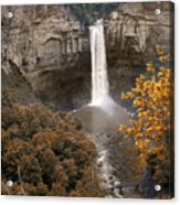 Taughannock Falls Park Acrylic Print