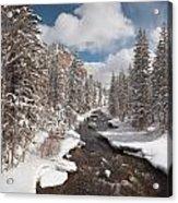 Taylor River Winter Acrylic Print
