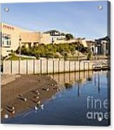 Te Papa Wellington New Zealand Acrylic Print by Colin and Linda McKie