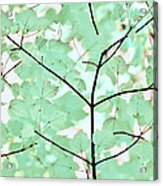 Teal Greens Leaves Melody Acrylic Print