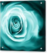 Teal Rose Flower Abstract Acrylic Print