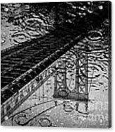 Tears Of New York Acrylic Print