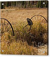 Tedder On The Holzwarth Historic Site Acrylic Print