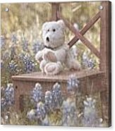 Teddy Bear And Texas Bluebonnets Acrylic Print