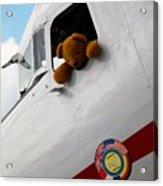 Teddy Bear Pilot Acrylic Print